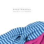 SpectraSoul – Shelter