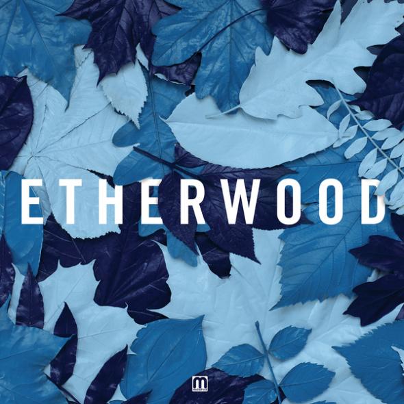 Etherwood – Blue Leaves