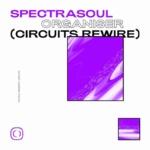 SpectraSoul – Organiser (Circuits Rewire) [Critical Music]